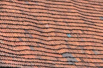 gewelltes Dach