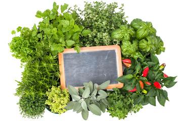 Wall Mural - Fresh kitchen herbs