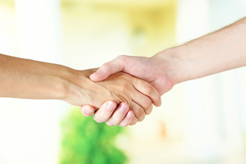 Handshake on light background