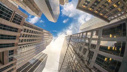 Modern Tall Skyscrapers of Manhattan