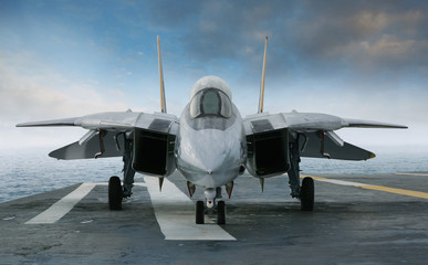 F-14 jet fighter on an aircraft carrier deck viewed from front