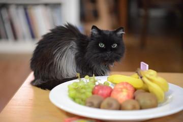 Schwarze Katze vor einem Obstteller