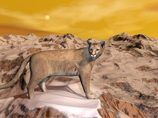 Cougar in the mountain - 3D render