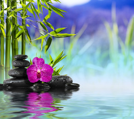 Fototapete - Purple Orchid, Stones and Bamboo on the water