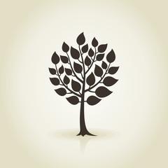 Tree wood3