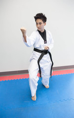 Taekwondo player in pose
