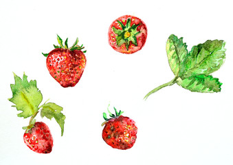 watercolor painting of strawberries