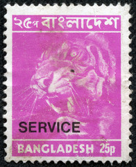 stamps printed in Bangladesh, shows a tiger