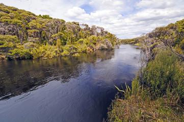 Remote River in a sub-tropical island