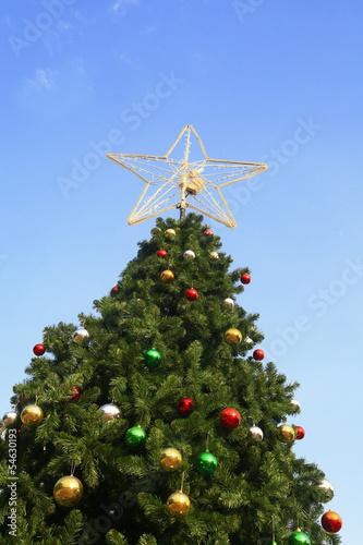Christmas tree with blue sky