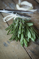 Bunch of fresh rosemary on wooden background