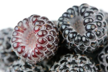 Black Raspberries Close-Up