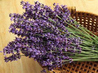 Wall Mural - Bunch of lavender