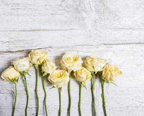Pastel roses on wooden background. Copy space