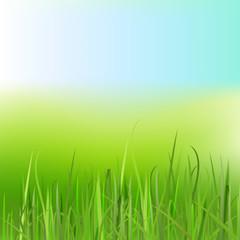 02_Grass