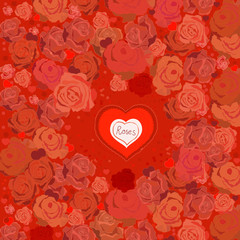 03_Roses