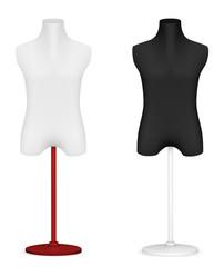 Empty male mannequin torso template