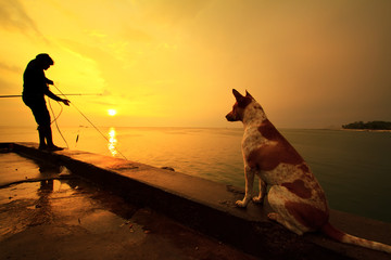 The dog looking fisherman fishes on the sea. Silhouette at sunri