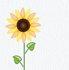 vector sunflower floral background