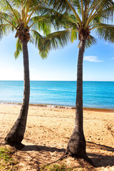 Two palm trees on tropical beach