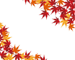 Autumnal leaf maple background Vector