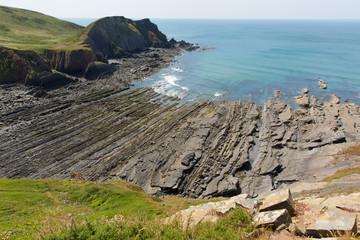 Rock strata in rocky beach cove