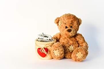 Teddy mit Schatz