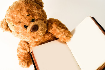 Teddy mit Buch