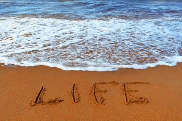 """Inscription on sand: """"life"""""""