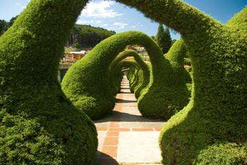 Sculpted Garden in Costa Rica