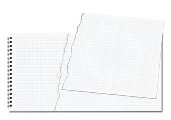 Bloc Papier Dechire