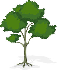 Vector cartoon tree