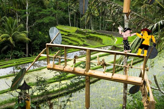 Weathervane in Balinese rice fields