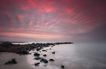Printed roller blinds Candy pink Long exposure sea sunrise