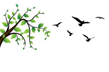 bird flying around a tree green branch, vector