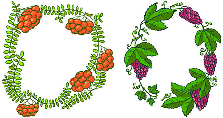 rowan and grape