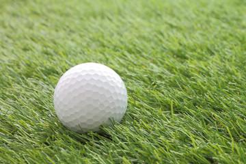 Side golf on green grass field.