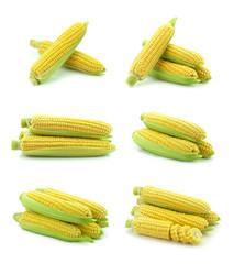 Kukurydza na białym tle