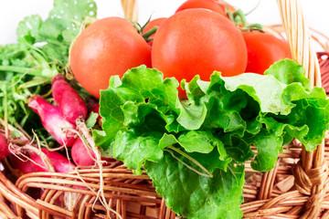 radish, tomato, lettuce, basket