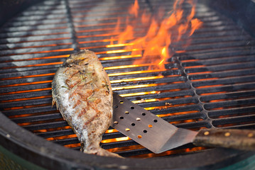 Dorado fish cooking on the grill
