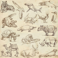 Animals around the world (collection no.3, old paper )