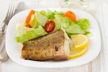 fried fish with salad and lemon on white plate