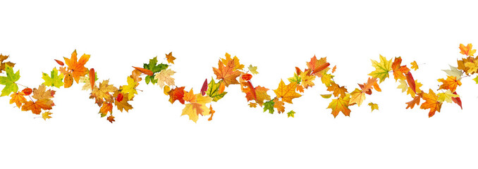 Seamless pattern of autumn leaves, isolated on white background.