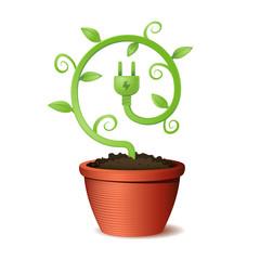 Green energy eco plant