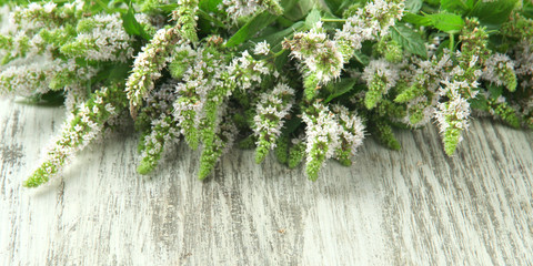 Fresh mint flowers on wooden background