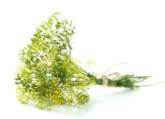 Fototapeta Fresh dill flowers, isolated on white obraz