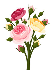 Colorful roses branch. Vector illustration.