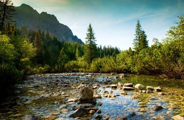 Mountain river in High Tatras in Slovakia
