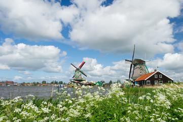 Windmills at Dutch Zaanse Schans