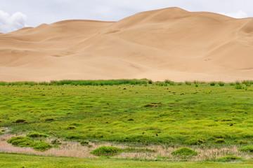 The Gobi Desert, Mongolia